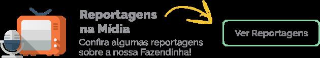 funcionamento_cia_dos_bichos_reportagem